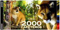 Colombie (Club de Medellin) 2000 Cafeteros, Colombia : Puma - 2014