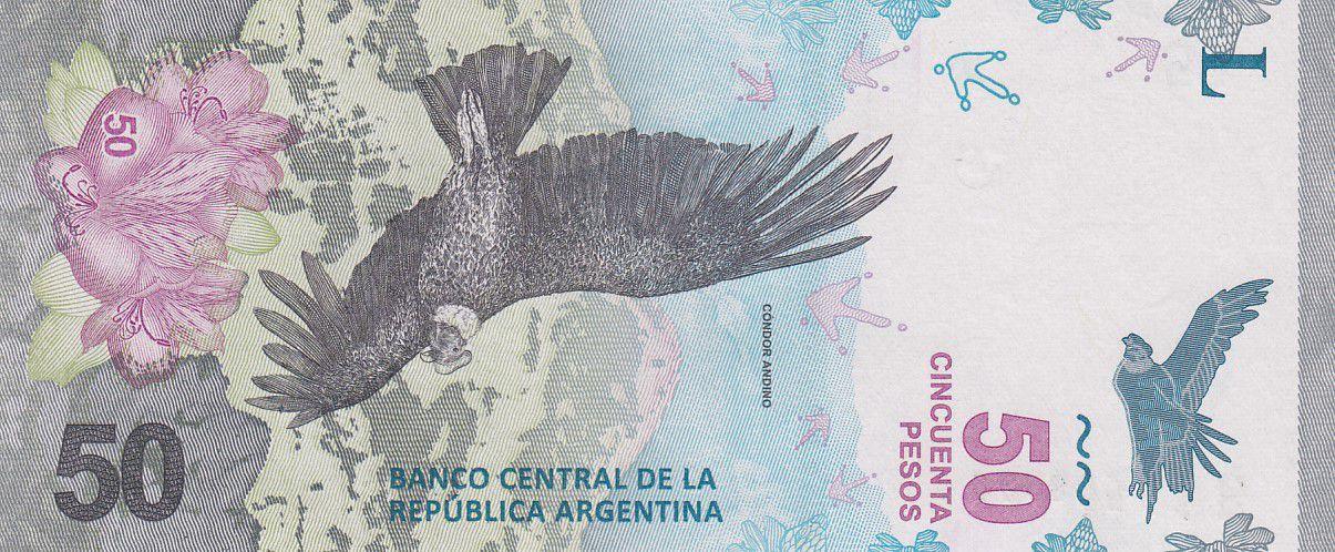 Argentina 50 Pesos Condor - Mountain 2018 (vertical format) - Serial B - UNC - P.363
