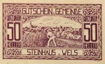 Austria 50 Heller, Steinhaus - notgeld 1920 - UNC