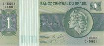 Brasilien 1 Cruzeiro Liberty - Banco Central bldg - 1980 Serial B16608