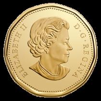 Canada 1 Dollar - Toronto - 2017