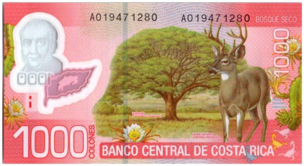 Costa Rica 1000 Colones Braulio Carrillo Colina - Cerf