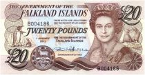 Falkland Islands New.2011 20 Pounds, Elizabeth II, penguins - Village 2011