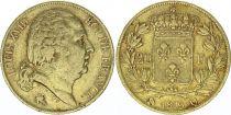 France 20 Francs Louis XVIII - 1819 Q Perpignan
