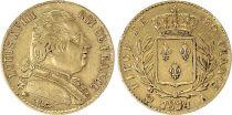 France 20 Francs Louis XVIII - Buste Habillé - 1814 A Or