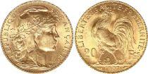 France 20 Francs Marianne - Coq 1907 Or