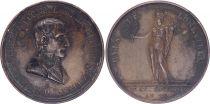 France Napoléon I - Bonaparte Premier Consul - Paix de Lunéville - AN 9 (1800-1801)