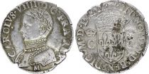 France Teston Charles VIII - M Toulouse 1567 - Argent