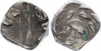 Gaule Drachme, Volques Tectosages - Drachme à la tête cubiste - 5 em ex