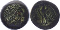 Grèce (Egypte) Bronze, Ptolemée I Soter (-323-283), Alexandrie