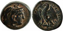 Grèce (Egypte) Bronze, Ptolémée II Philadelphos (-285-246), Alexandrie (-247-246)