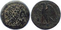 Grèce (Egypte) Bronze, Ptolémée II Philadelphos (-285-246), Alexandrie (-256)