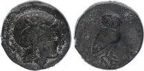 Grèce (Eolide) Eolide, Neonteichos - Bronze IIe siècle avant JC - TB+