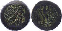 Greece (Egypt) Bronze, Ptolemy I Soter (-323-283), Alexandria
