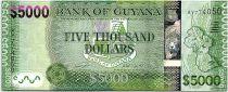 Guyana 5000 Dollars  Carte de l\'île - Paysage - ND (2019) - Neuf