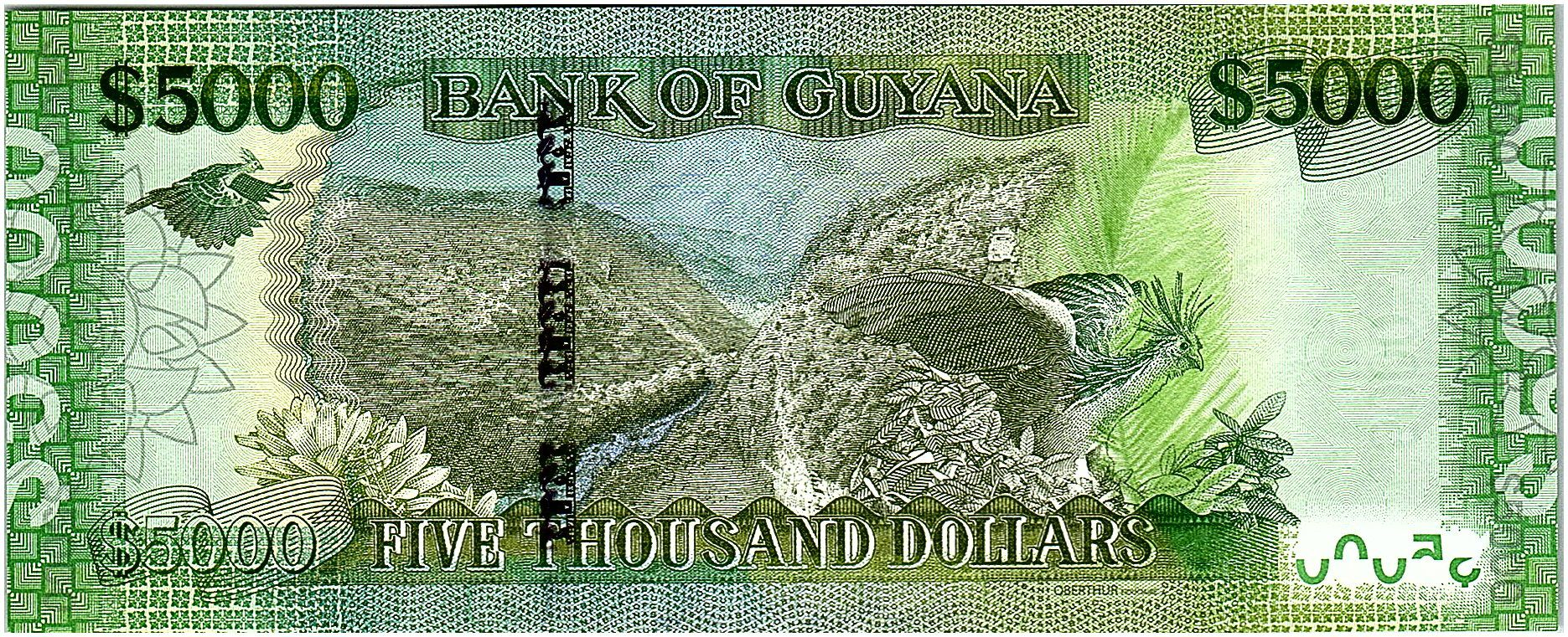 Guyana 5000 Dollars Arms - Island map -  ND (2019) - UNC