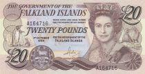 Iles Falkland 20 Pounds, Elisabeth II, pingouins - Village 1984