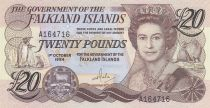 Islas Malvinas 20 Pounds, Elizabeth II, penguins - Village 1984