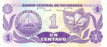 Nicaragua 1 Centavo F.H. Cordoba - Fleur
