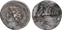 Roma Republic Denarius,  Licinia 84 BC Rome - F+