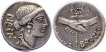 Roma Republic Denier,  Postumia ( -48-49 ) - PIETAS