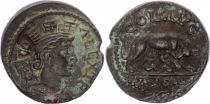 Rome (Provinces) 1 As, Alexandria (Troade) - Tyche, She-Wolf Romulus and Remus (250-268)