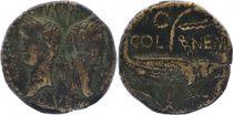 Rome Empire Dupondius - Auguste et Agrippa - As de Nimes - 27 à +14