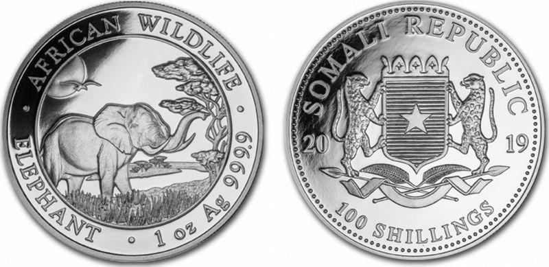 Somalie 100 Shillings éléphant - Once Argent 2019