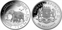 Somalie 100 Shillings Eléphants - Once Argent 2022