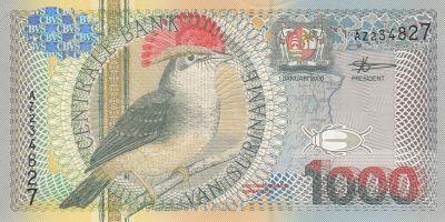 Suriname 2000 10 GuldenUncirculated BanknoteUNC