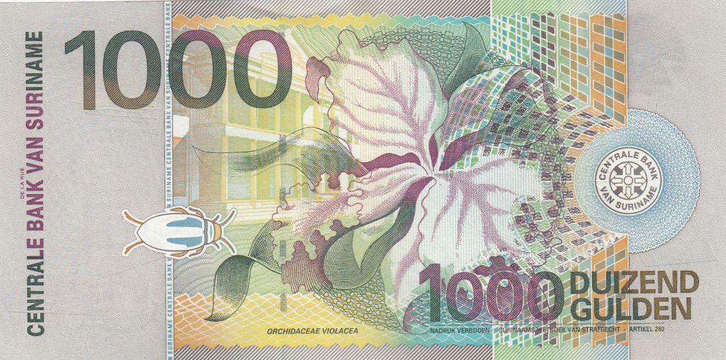 Suriname 1000 Gulden Gobe-mouches Royal - 2000 - Neuf