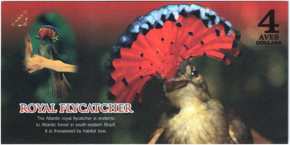 Territoires Equatoriaux 4 Aves Dollars, Atlantic Forest - Gobe-mouches royal - 2015